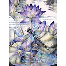 DIY 5D Diamond Painting by Number Kits, Crystal ... - Amazon.com