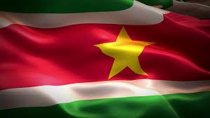 Afbeeldingsresultaat voor suriname vlag