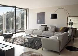 rugs modern living rooms magnificent