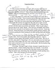 descriptive essay introduction example sample cover letter cover letter descriptive essay introduction example sampleself descriptive essay example