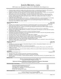 it project coordinator resume  seangarrette cofinance manager project manager sample resume project manager professional