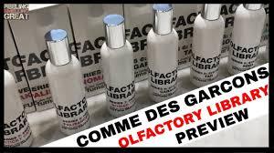 <b>Comme Des Garcons Olfactory</b> Library Review | Top 10 Comme Des ...