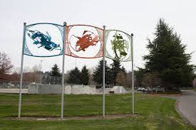 culture archives crosscut public art depicting skateboard moves at brannan park auburn s big outdoor sports complex