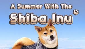 A Summer with the <b>Shiba Inu</b> on Steam