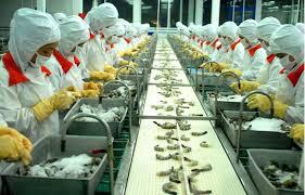 Xuất khẩu lao động Nhật Bản: Quy trình tuyển chọn thực tập sinh