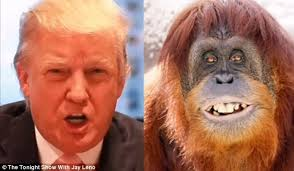 Image result for donald trump orange face