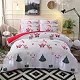 YOUSA Blue Bedding Set Kids Bedding for Christmas ... - Amazon.com