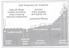 different methods of soil conservation   essaymethods of soil conservation