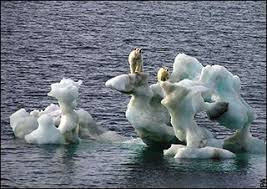 Image result for global warming images