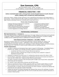financial executive cfo resume
