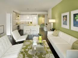 wonderful black and green living room cool furniture for green living room with long white sofa black green living room home