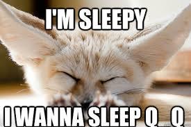 Sleepy Fennec Fox memes | quickmeme via Relatably.com