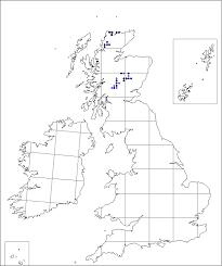 Carex rupestris | Online Atlas of the British and Irish Flora