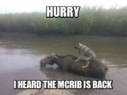 The Weekly Mandatory Meme Contest Winners: Dog Riding Moose ... via Relatably.com