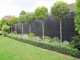 Small Picture Fence Garden Garden Fencing Owen Chubb Garden Landscapers Best