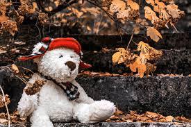 Белый плюшевый <b>мишка</b> в красной шляпе в <b>шарфе</b> сидит на ...