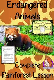 best ideas about endangered animals lessons endangered and extinct animals of the rainforest complete lesson