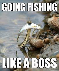 Fishing Snake memes | quickmeme via Relatably.com