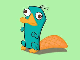 「perry the platypus」の画像検索結果