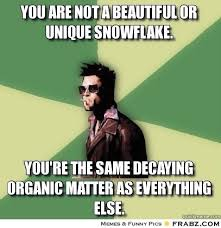 You are not a beautiful or unique snowflake. ... - Helpful Tyler ... via Relatably.com