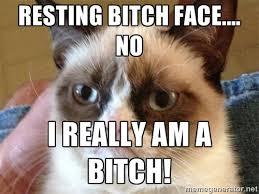 Resting Bitch Face.... No I really am a Bitch! - Angry Cat Meme ... via Relatably.com