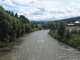 Rio Bistriţa