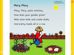 Image result for mary mary quite contrary