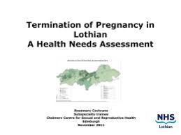 risk assessment template  bruntsfield parents clubs termination of pregnancy in lothian a health needs assessment