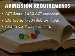 florida state university by abbey vinzant admission requirements
