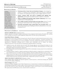 good resume pro writers free download   essay and resume    sample resume  good resume pro writers for senior sales and operations manager with professional experience