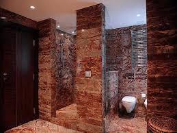 layouts walk shower ideas: small bathroom designs with walk in show ikea closet organizer