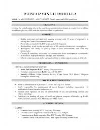 free volunteer resume template