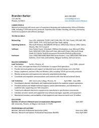 bitchin resumes customized resume writing and career coaching bitchin resumes customized resume writing and career coaching chronological resume