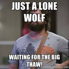 just a lone wolf waiting for the big thaw! - Alan Hangover | Meme ... via Relatably.com