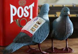 """Résultat de recherche d'images pour """"pigeons voyageurs messages"""""""