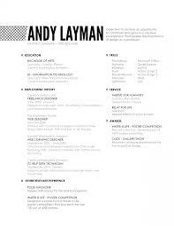infographic cv design template sample examples experience resumes resume website design examples entry level web developer resume graphic design resume examples 2014 graphic design