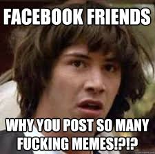 FACEBOOK FRIENDS WHY YOU POST SO MANY FUCKING MEMES ... via Relatably.com