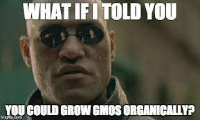 Organic vs GMO - Imgflip via Relatably.com