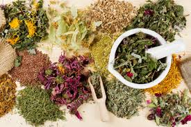 Image result for resep herbal