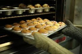 mold for cupcake mayer boch