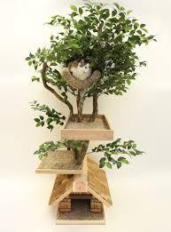 """Résultat de recherche d'images pour """"arbre a chat"""""""