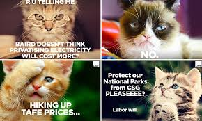 Politician resorts to lame cat memes during election campaign and ... via Relatably.com