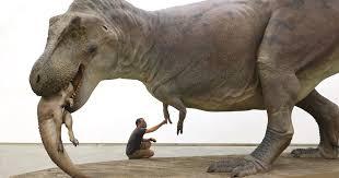 What Did SUE The <b>T</b>. <b>Rex</b> Look Like When Alive? New Field Model ...