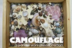 wonderworks camouflage in nature engineering library makers how would you hide if you were an animal
