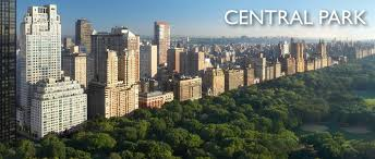 Image result for central park new york