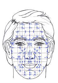 """Résultat de recherche d'images pour """"reflexologie facial"""""""