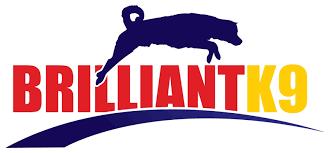 BrilliantK9 | <b>Custom Dog Harnesses</b>, Leashes & More