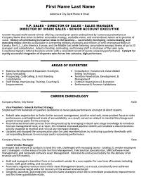 Resume Examples For Inside Sales     BORH Resume Examples For Inside Sales Vp Director Manager Account Executive Sales Inside Sales Resume Sample