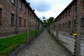 reflecting on auschwitz a photo essay words faspe there used to be train tracks here in between the barbed wire separating the concentration