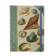 <b>Книга для записей Shells</b>